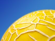Galia Melon against a blue sky Royalty Free Stock Photos