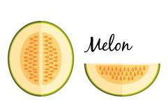 Galia melon in flat design isolated on white background Royalty Free Stock Photos