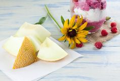 Galia melon in front of ice cream cup Stock Photography