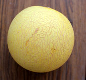 Galia melon. Sarda in India and Persia, Cucumis melo var reticulatus, a melon up to 1 5 kg in size with light yellow to dark yellow reticulated skin and stock photos