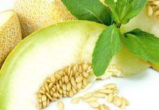 Galia Melone Lizenzfreie Stockbilder