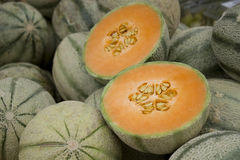 Galia melons Stock Images