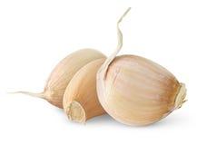 Isolated garlic cloves. Three unpeeled cloves of fresh garlic isolated on white background Royalty Free Stock Photos
