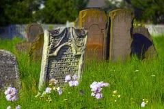Galich, 18个世纪Karaite公墓 库存图片