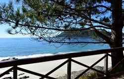 Beach with pine tree, bright sand and wooden handrail. Blue sea, sunny day, Galicia, Spain. Galicia, La Coruna Province, Rias Altas, Spain. Beach with pine tree stock photos
