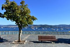 Bench, tree and stone handrail in a beach promenade. Boats in a bay with blue water, clear sky, sunny day. Galicia, Spain. stock photo