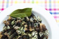 Galician seafood Royalty Free Stock Photos