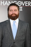 galifianakiszach Royaltyfria Bilder