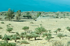 Galiläa. Nordisrael. Stockbilder