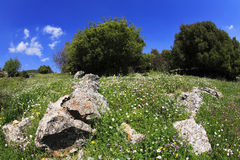 The Galilee in clear spring day Royalty Free Stock Images