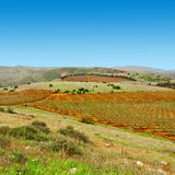 Galilee Stock Images