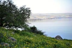 Galilee Kinneret湖海的看法从Mt的 阿尔贝尔山,美好的湖风景,以色列,提比里亚 免版税库存图片