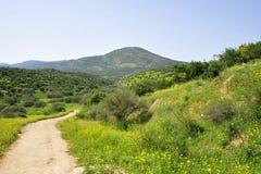 Galilee landscape. stock images