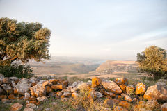 Galilee landscape Royalty Free Stock Images