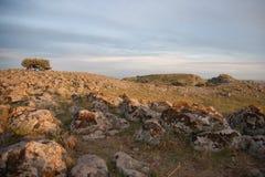 Galilee landscape Stock Photo