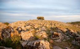 Galilee landscape Stock Photos