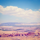 Galilee Royalty Free Stock Photos