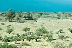 galilee norr israel Arkivbilder