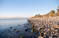 Galilee. North Israel . Sea of Galilee .Landscape Of North Galilee In Early winter, Israel Stock Photo
