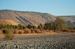 Galilee. North Israel . Sea of Galilee .Landscape Of North Galilee In Early winter, Israel royalty free stock images
