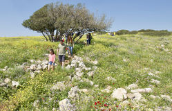 Galilee på våren Arkivfoto