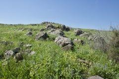 Galileen på våren Arkivbilder