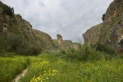 Galileen på våren Royaltyfri Bild