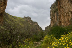 Galileen på våren Royaltyfria Foton