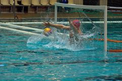 Galimzyanov Anvar. Sintez(Kazan) team of waterpolo Royalty Free Stock Photography