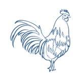 galinha ilustração royalty free