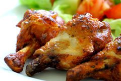 Galinha fotografia de stock royalty free
