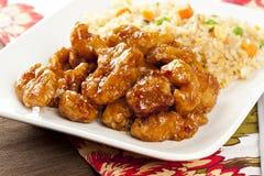 Galinha alaranjada caseiro com arroz Foto de Stock Royalty Free