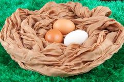 A galinha bege, marrom, branca eggs no ninho feito do saco de pano no fundo verde Fotografia de Stock