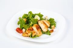 Galinha Caesar Salad Foto de Stock Royalty Free