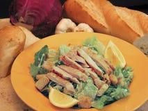 Galinha Caesar Salad Fotografia de Stock Royalty Free