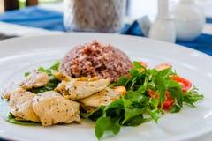 Galinha com arroz integral Imagens de Stock