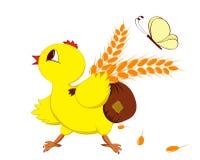 galinha com trigo Fotos de Stock