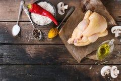 Galinha crua com tempero e arroz Fotografia de Stock