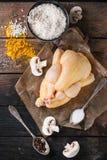 Galinha crua com tempero e arroz Imagens de Stock Royalty Free