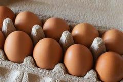 A galinha de Brown eggs em um recipiente cinzento do cartão Imagens de Stock Royalty Free