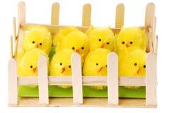 Galinha de Easter na casa de galinha, fotos de stock
