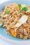 Galinha do arroz fritado imagem de stock
