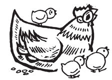 Galinha e galinhas Fotos de Stock Royalty Free