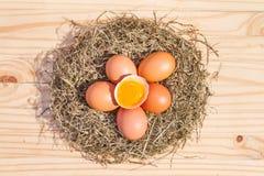 A galinha eggs em um ninho na vista de madeira, superior Foto de Stock Royalty Free