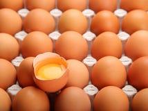 A galinha fresca eggs o alimento biológico Foto de Stock