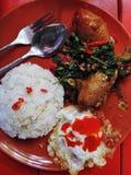 A galinha knuckles picante com manjericão Foto de Stock