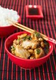 Galinha Kung Pao - pratos do chinês tradicional imagem de stock