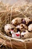 Galinha plástica branca em um ninho com ovos de codorniz Fotografia de Stock
