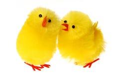 Galinha dois Easter que comunica-se Imagem de Stock