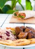 Galinha Stewed com arroz Imagens de Stock Royalty Free